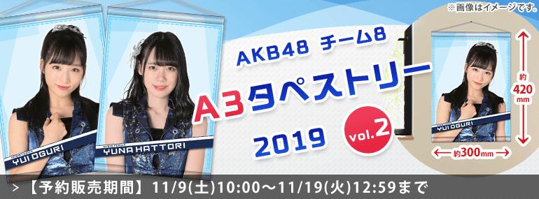 AKB48 チーム8 A3タペストリー2019 vol.2