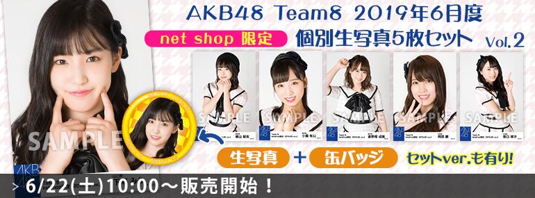 AKB48 チーム8 2019年6月度 net shop限定個別生写真5枚セットvol.2