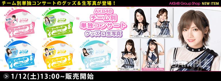 AKB48 チーム別単独コンサート