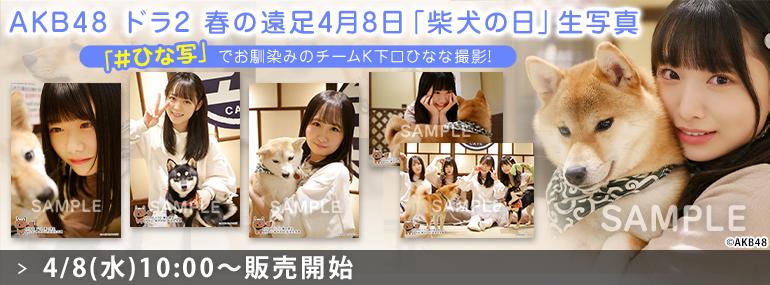 AKB48 ドラ2 春の遠足 4月8日「柴犬の日」生写真