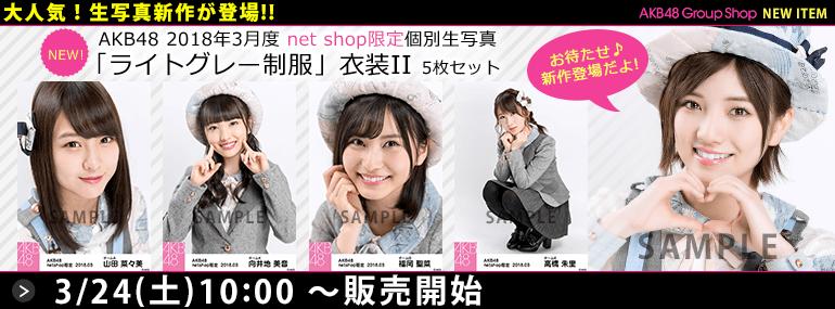 AKB48 2018年3月度 net shop限定個別生写真「ライトグレー制服」衣装II5枚セット