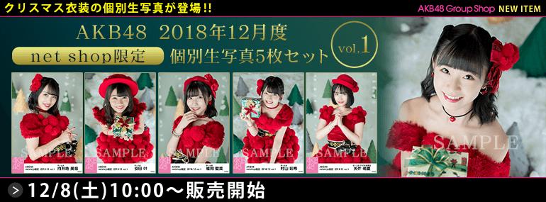 AKB48 2018年12月度 net shop限定個別生写真5枚セットvol.1